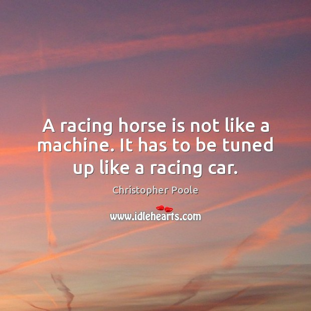 A racing horse is not like a machine. It has to be tuned up like a racing car. Image