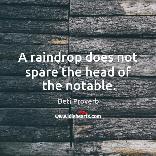 A raindrop does not spare the head of the notable. Beti Proverbs Image