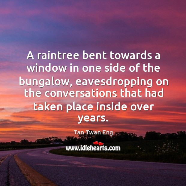Image, A raintree bent towards a window in one side of the bungalow,