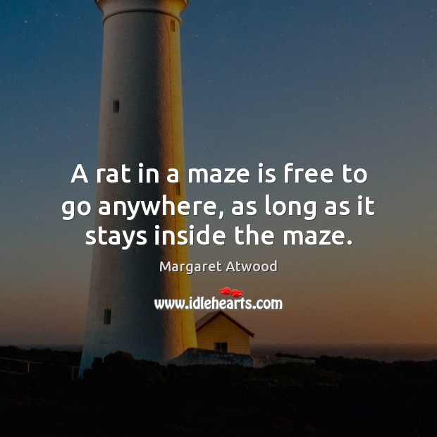 A rat in a maze is free to go anywhere, as long as it stays inside the maze. Margaret Atwood Picture Quote