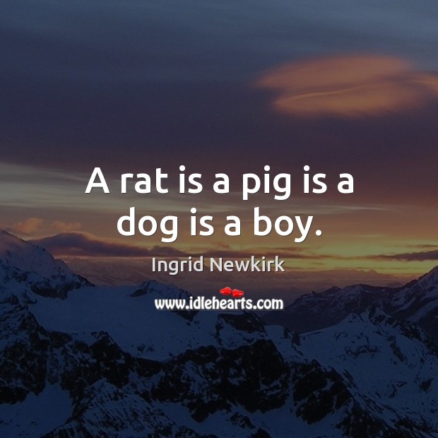 Ingrid Newkirk Picture Quote image saying: A rat is a pig is a dog is a boy.
