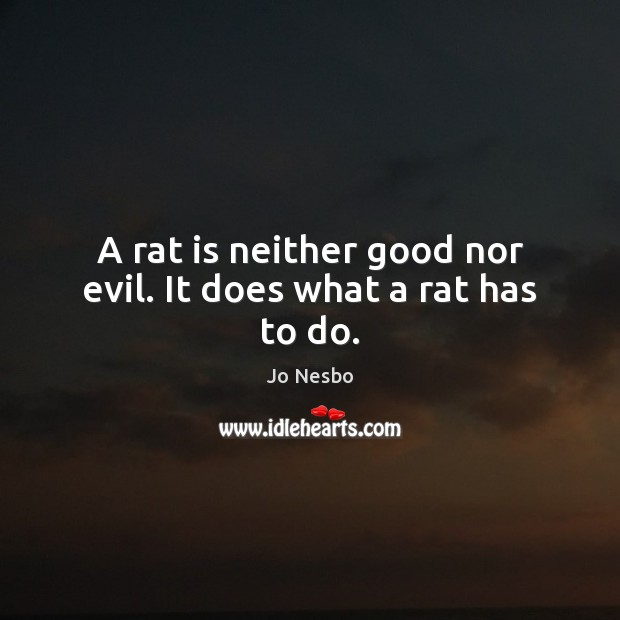 A rat is neither good nor evil. It does what a rat has to do. Jo Nesbo Picture Quote