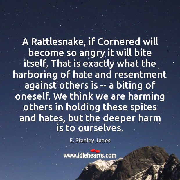 A Rattlesnake, if Cornered will become so angry it will bite itself. E. Stanley Jones Picture Quote