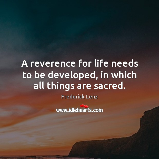 A reverence for life needs to be developed, in which all things are sacred. Image