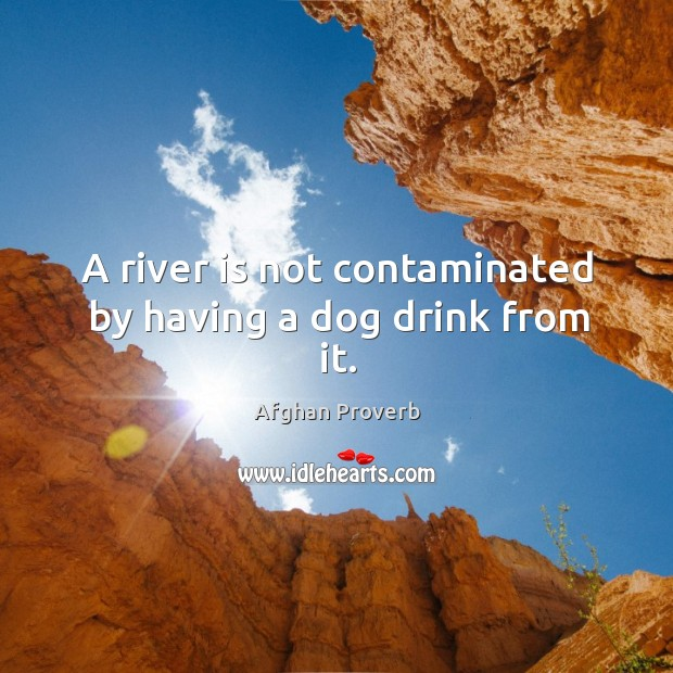 A river is not contaminated by having a dog drink from it. Afghan Proverbs Image