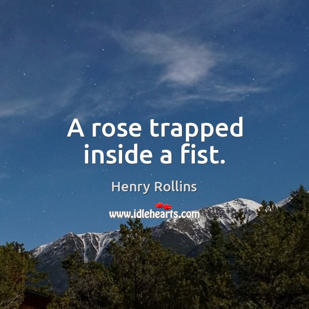A rose trapped inside a fist. Image