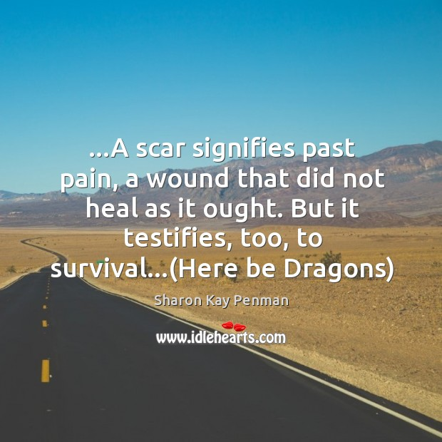 …A scar signifies past pain, a wound that did not heal as Sharon Kay Penman Picture Quote