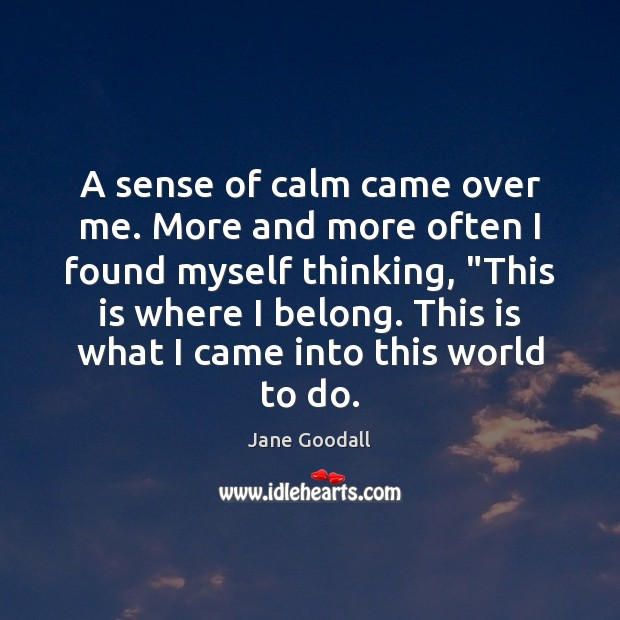 A sense of calm came over me. More and more often I Jane Goodall Picture Quote