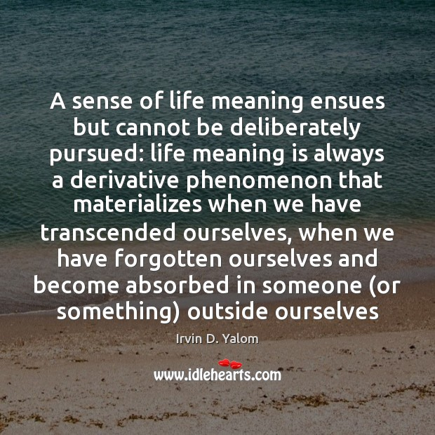 A sense of life meaning ensues but cannot be deliberately pursued: life Image