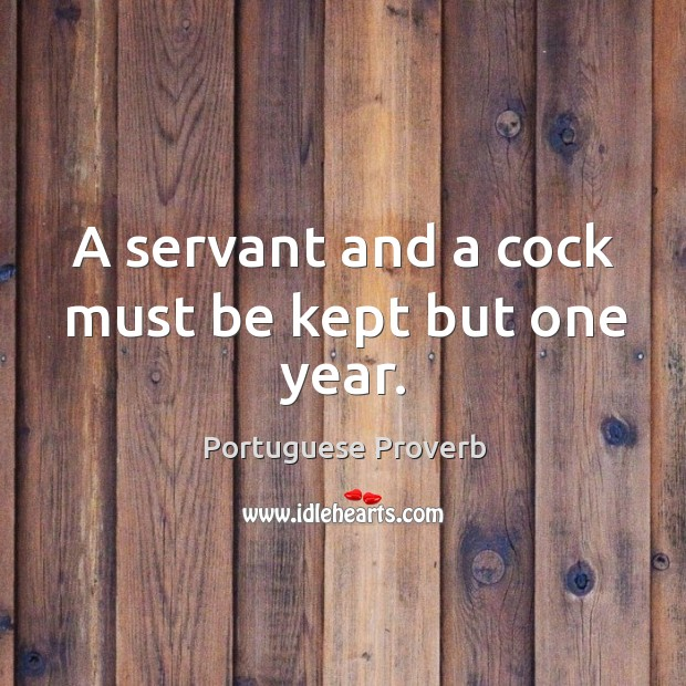 A servant and a cock must be kept but one year. Image