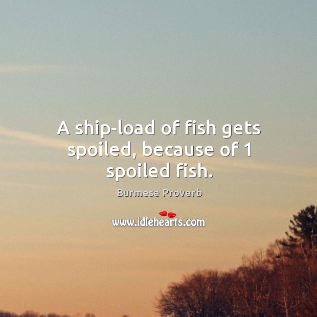 A ship-load of fish gets spoiled, because of 1 spoiled fish. Burmese Proverbs Image