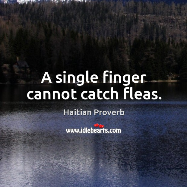 A single finger cannot catch fleas. Haitian Proverbs Image