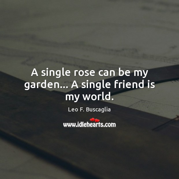 A Single Rose Can Be My…
