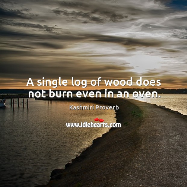 A single log of wood does not burn even in an oven. Kashmiri Proverbs Image