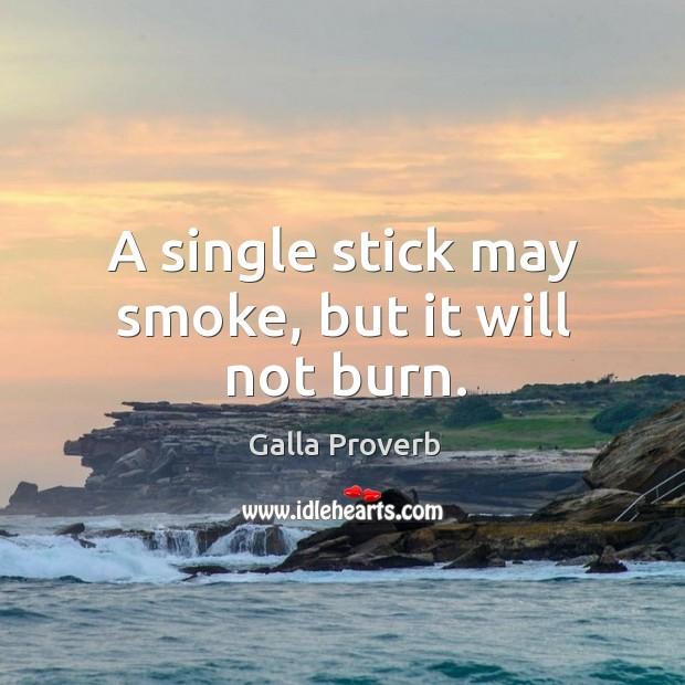 A single stick may smoke, but it will not burn. Image