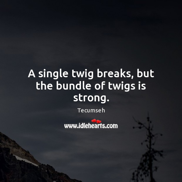 Image, A single twig breaks, but the bundle of twigs is strong.