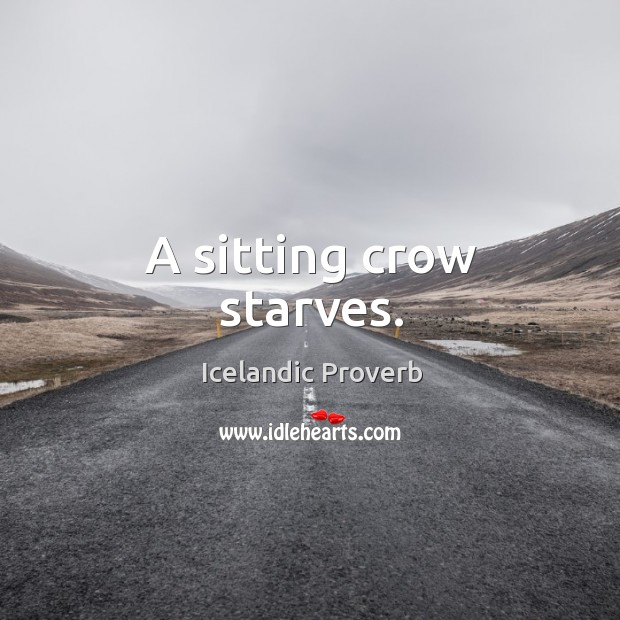 A sitting crow starves. Icelandic Proverbs Image