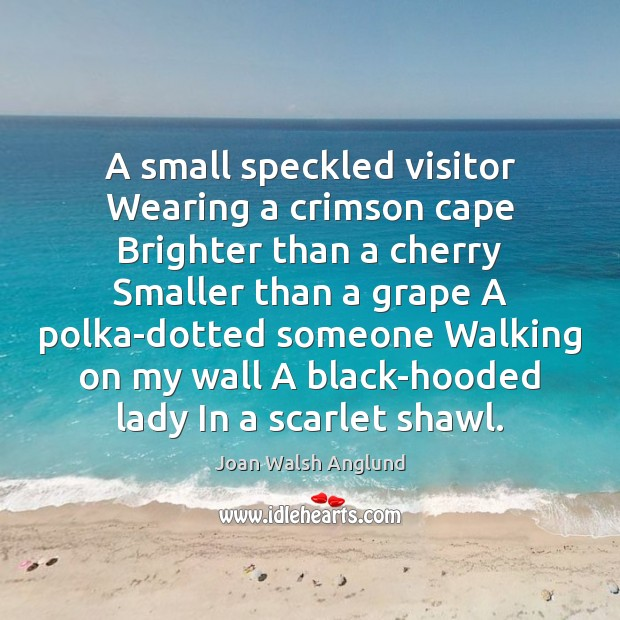 A small speckled visitor Wearing a crimson cape Brighter than a cherry Joan Walsh Anglund Picture Quote