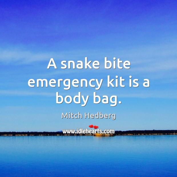 Image, A snake bite emergency kit is a body bag.