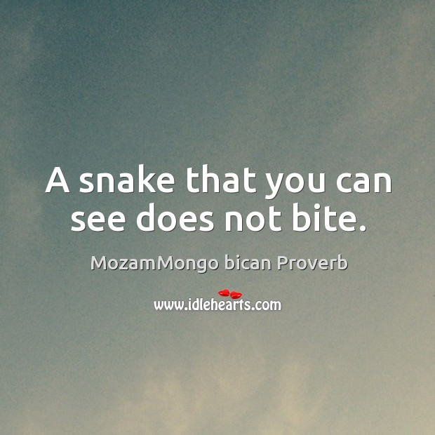 A snake that you can see does not bite. MozamMongo bican Proverbs Image