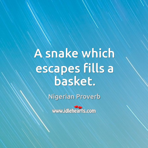 Image, A snake which escapes fills a basket.