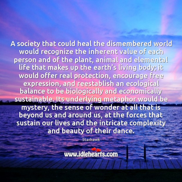 A society that could heal the dismembered world would recognize the inherent Image