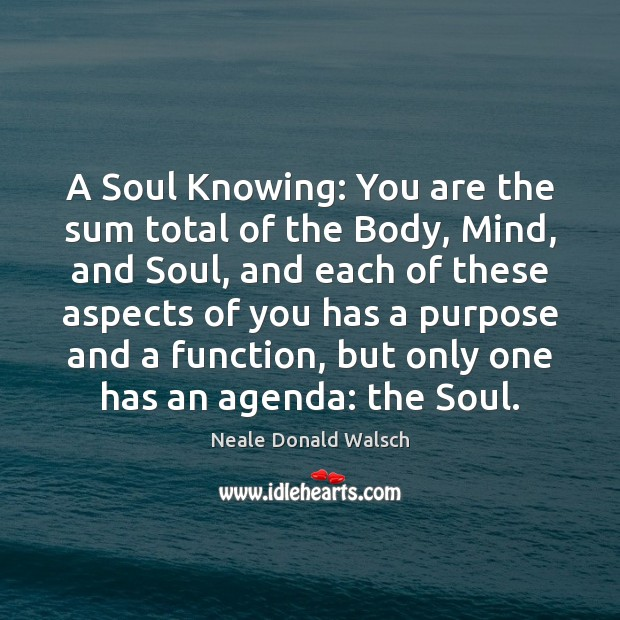 Image, A Soul Knowing: You are the sum total of the Body, Mind,