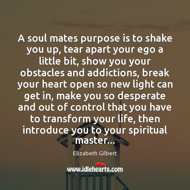 A soul mates purpose is to shake you up, tear apart your Elizabeth Gilbert Picture Quote