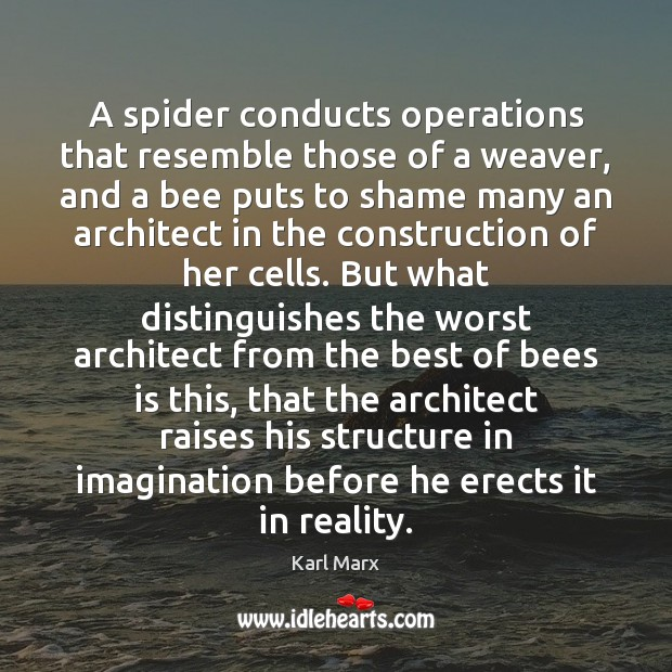 Image, A spider conducts operations that resemble those of a weaver, and a