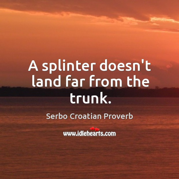 A splinter doesn't land far from the trunk. Serbo Croatian Proverbs Image