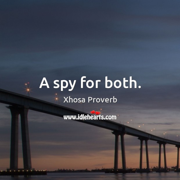 Image, A spy for both.