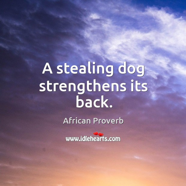 Image, A stealing dog strengthens its back.