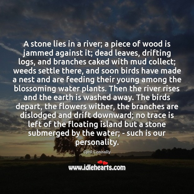 Image, A stone lies in a river; a piece of wood is jammed