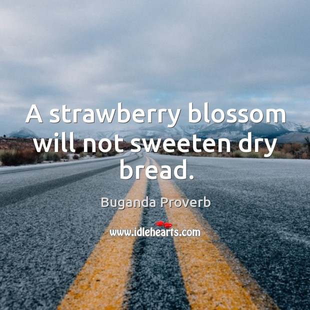 A strawberry blossom will not sweeten dry bread. Buganda Proverbs Image