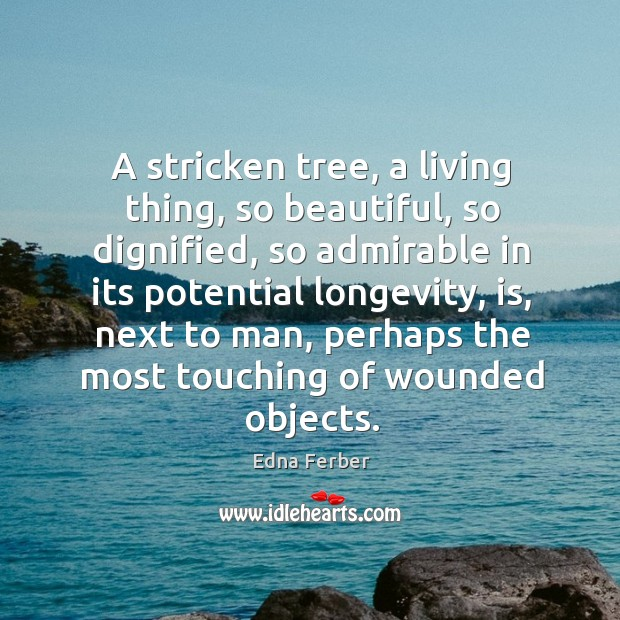 A stricken tree, a living thing, so beautiful Edna Ferber Picture Quote