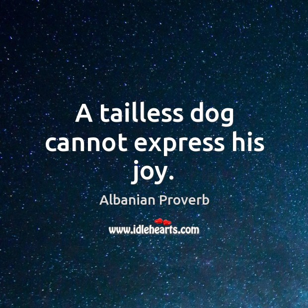 A tailless dog cannot express his joy. Albanian Proverbs Image