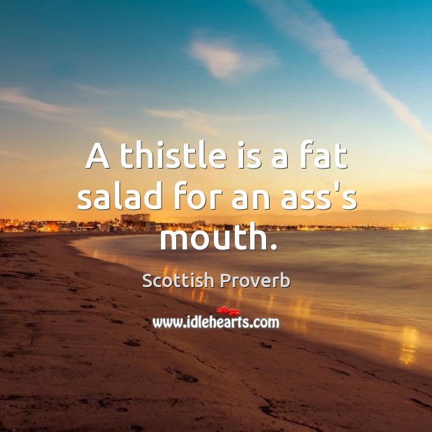 Image, A thistle is a fat salad for an ass's mouth.