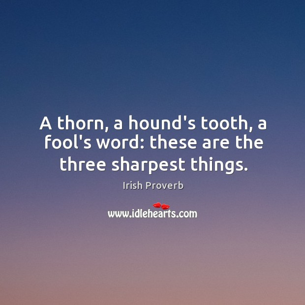 A thorn, a hound's tooth, a fool's word: these are the three sharpest things. Image