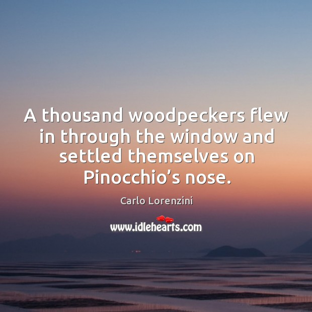 Image, A thousand woodpeckers flew in through the window and settled themselves on pinocchio's nose.