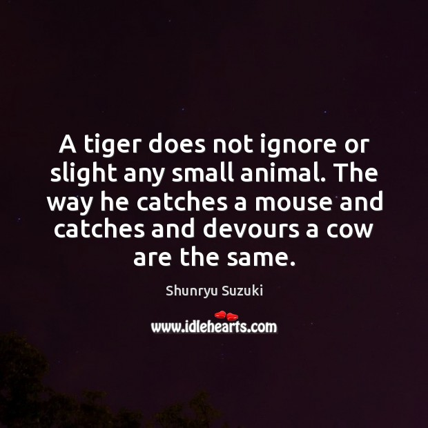 Image, A tiger does not ignore or slight any small animal. The way