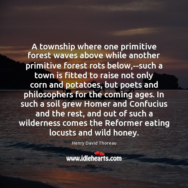 A township where one primitive forest waves above while another primitive forest Image