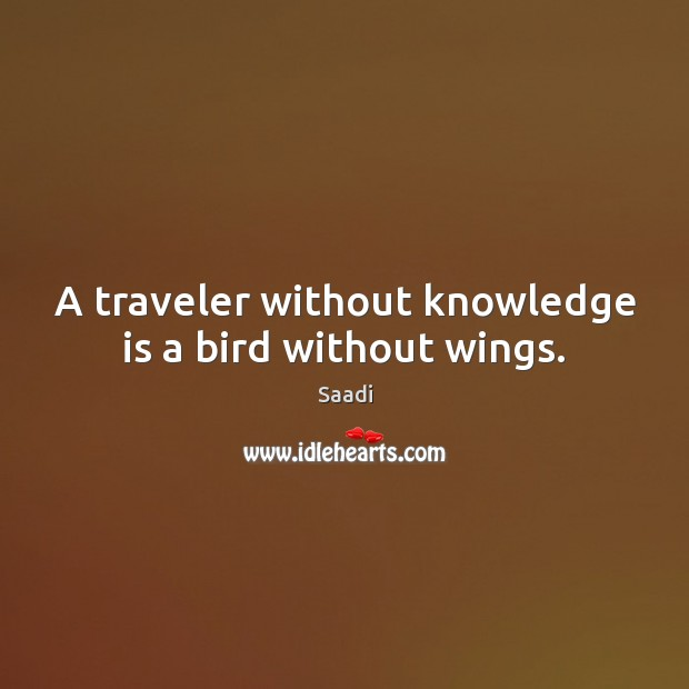 A traveler without knowledge is a bird without wings. Saadi Picture Quote