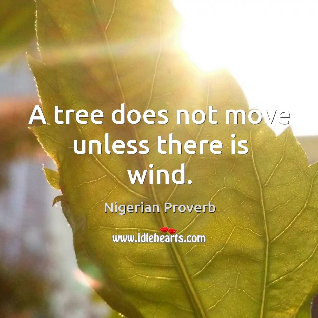 Image, A tree does not move unless there is wind.