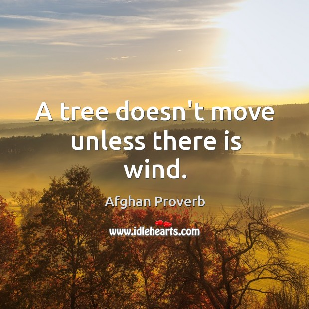 A tree doesn't move unless there is wind. Afghan Proverbs Image