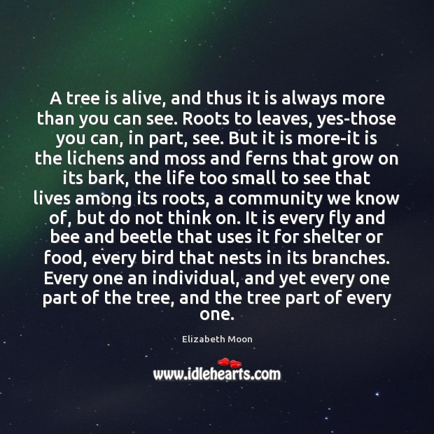 A tree is alive, and thus it is always more than you Elizabeth Moon Picture Quote