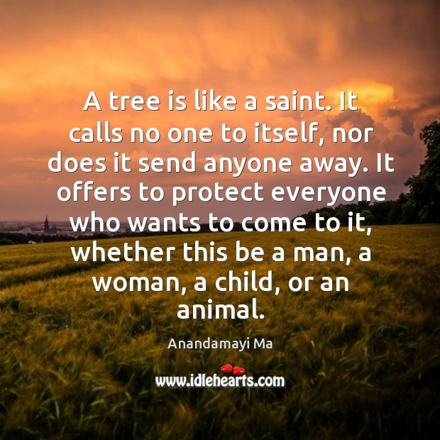 Image, A tree is like a saint. It calls no one to itself,