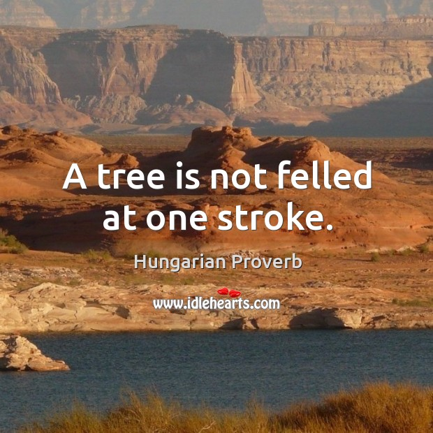 A tree is not felled at one stroke. Image