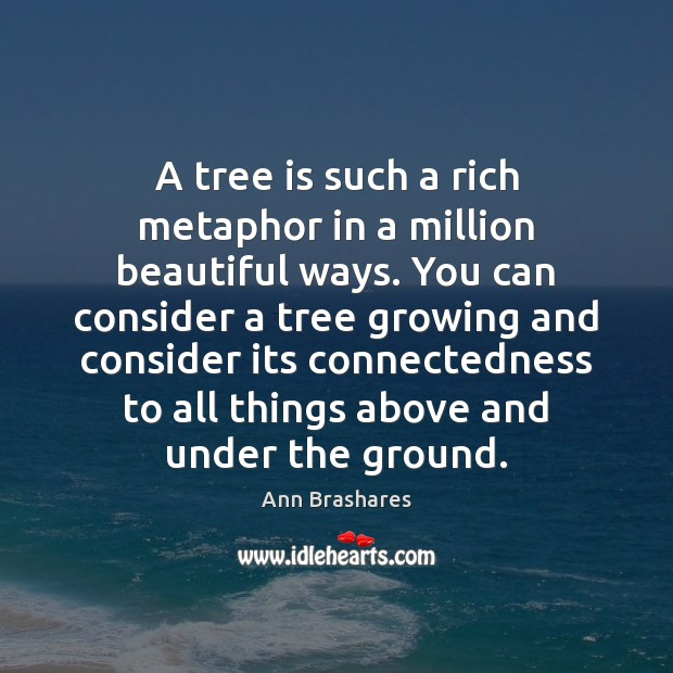 A tree is such a rich metaphor in a million beautiful ways. Image