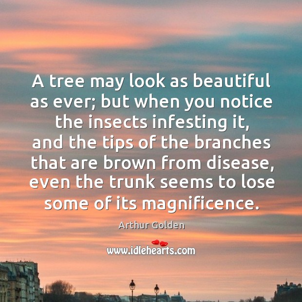 Image, A tree may look as beautiful as ever; but when you notice