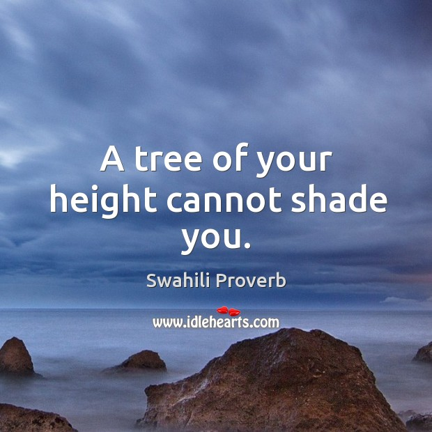 A tree of your height cannot shade you. Swahili Proverbs Image